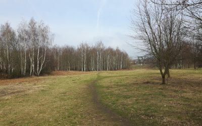 Ein Stadtteilgrün für Dresden-Trachau